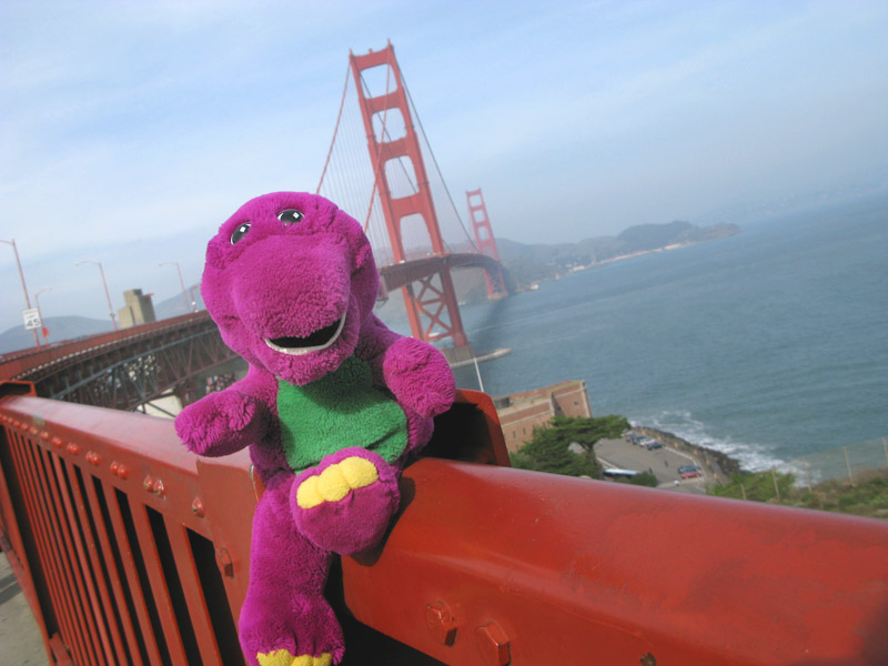 Barney on the Golden Gate Bridge